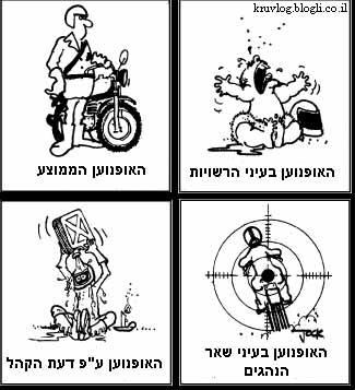 the-motorcyclist.jpg